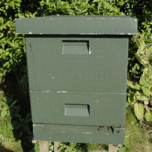 Flipped or under-supered hive ready for the winter